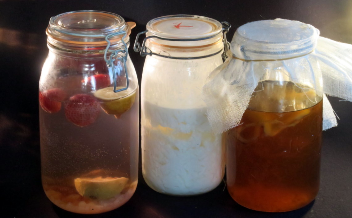 fermentations